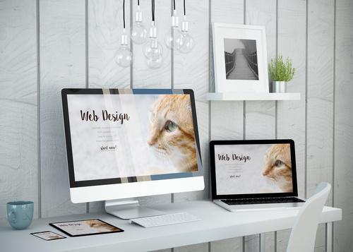 Elisa Cabezas, disseny de pàgines web amb WordPress i responsives.